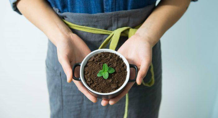 Medio ambiente aromas industria alimentaria